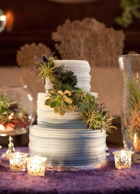 bolos decorados suculentas 11