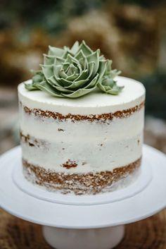 bolos decorados suculentas 7